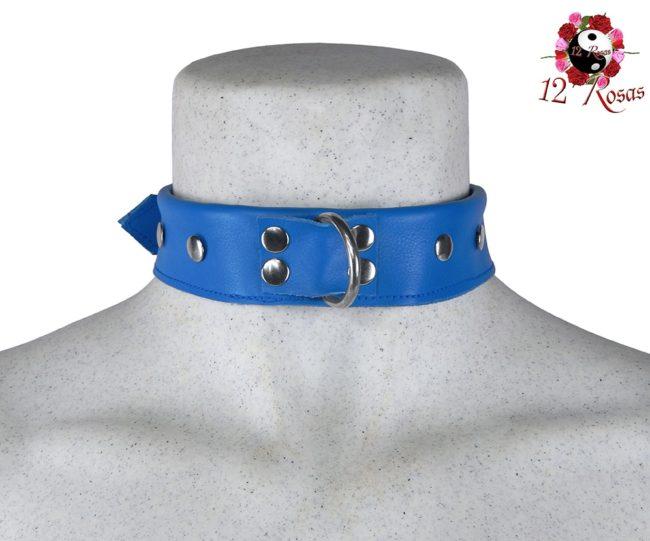 Collar Maximum Azul Frontal 3