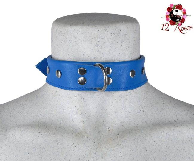 Collar Maximum Azul Frontal 3